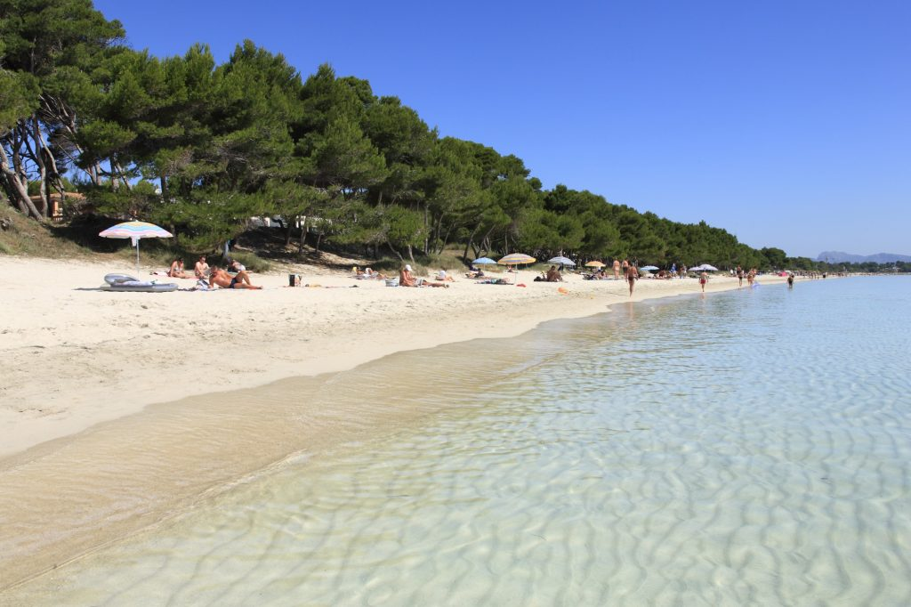 Life's a beach in Alcudia